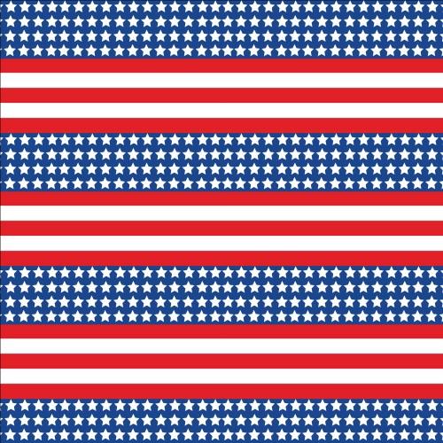 Patriotic US Flag 651 Small Print Printed Vinyl