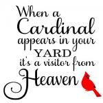 Free Download - Cardinal Visitor