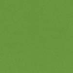 "Bazzill Smoothie Cardstock - Lime Crush - 12"" x 12"" Sheet"