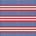 "Printed Pattern Vinyl - Patriotic US Flag Small 12"" x 12"" Sheet"