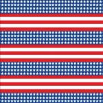 "Printed Pattern Vinyl - Patriotic US Flag Small 12"" x 24"" Sheet"